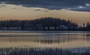 Aamunkoitto järvenrannassa. Taustalla metsää ja taloja. Etualalla kaislikkoa.