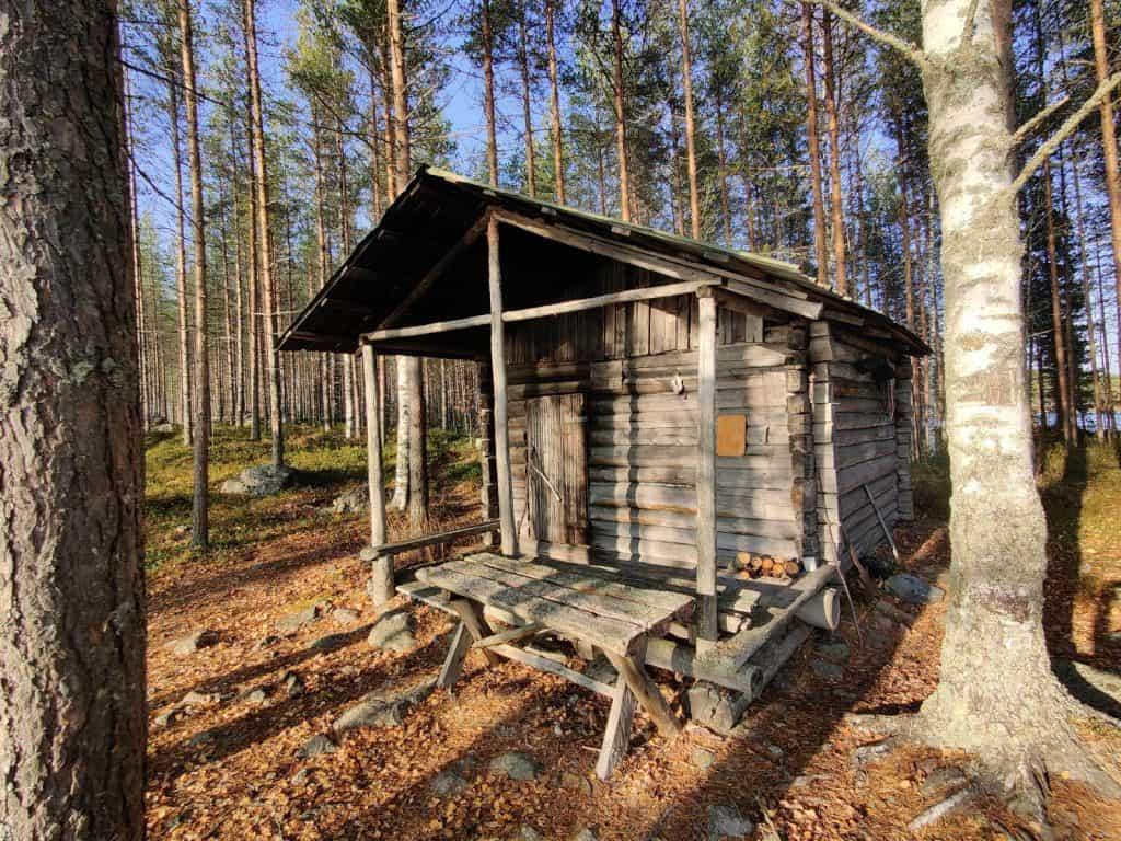 Vanha tukkikämppä kauniissa, aurinkoisessa ruskassa, Reisjärven metsässä. Maa täynnä pudonneita lehtiä ja ympärillä puita.